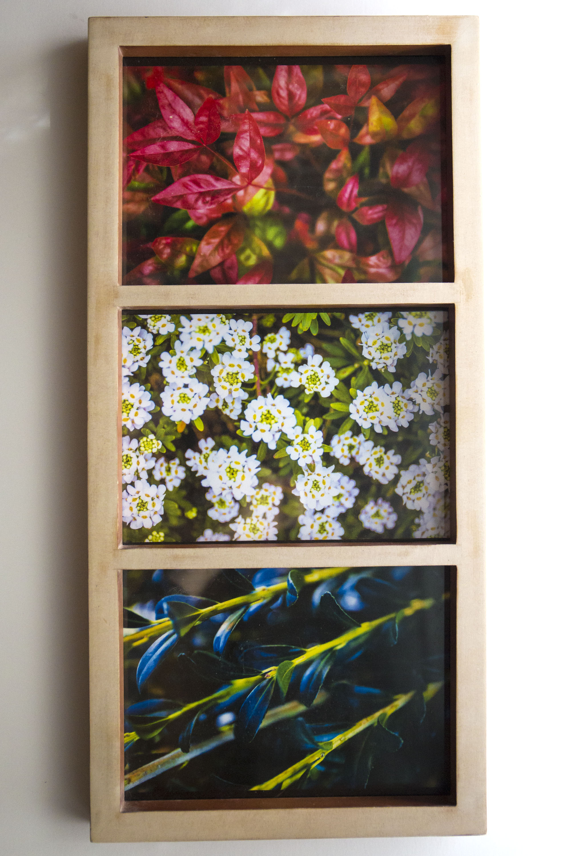3 piece nature photo frame